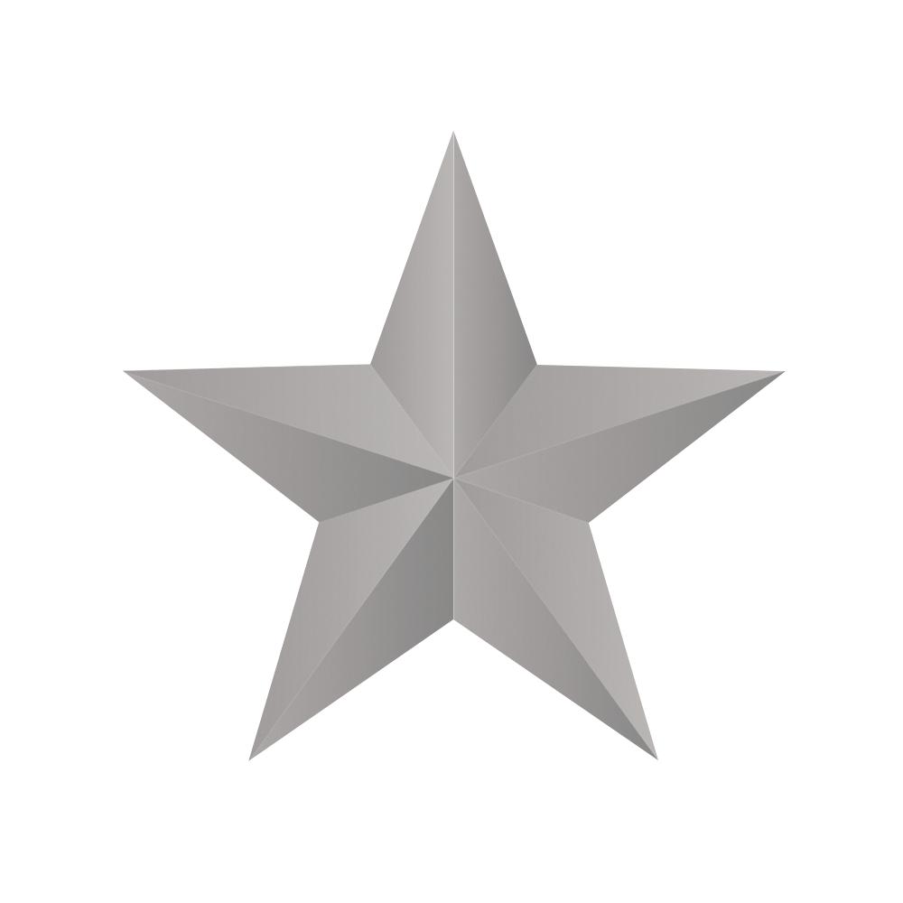 Embossing-Stanzer: 3D Stern, 5cm ø, SB-Blister 1Stück