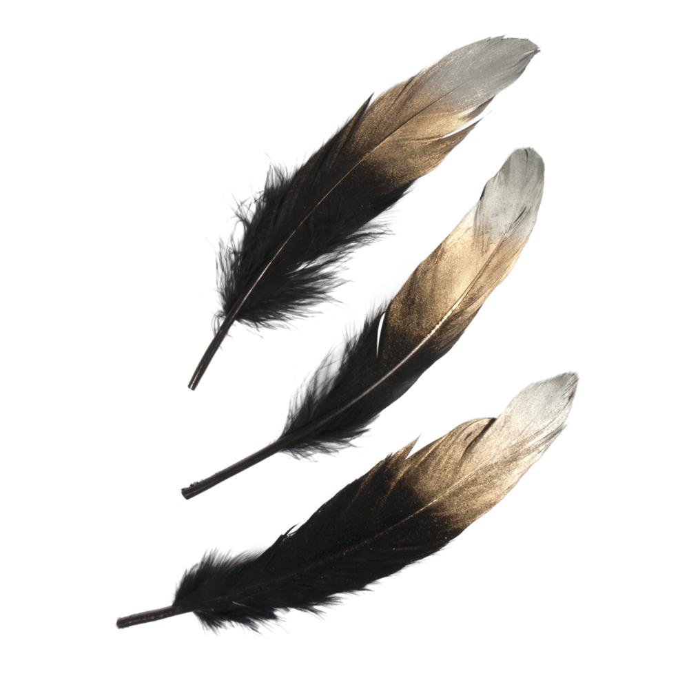 Federn mit silber-gold-Farbverlauf, 15-20cm, SB-Btl 3Stück